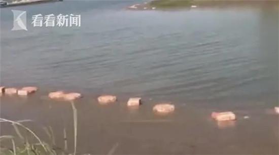 几百箱冻品猪内脏鸡翅漂浮江面,怎么回事?