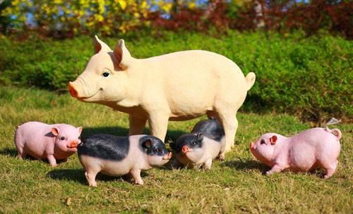 官方:春节期间将持续投放中央冻猪肉储备