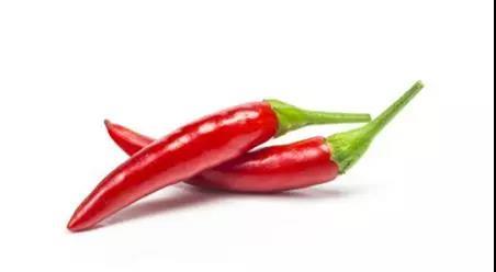 辣椒不仅是调味剂,它还可以治猪病,你还不知道吧?