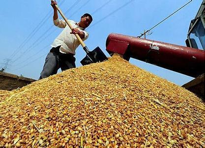 易涨难跌?多种因素助推豆粕价格疯涨!