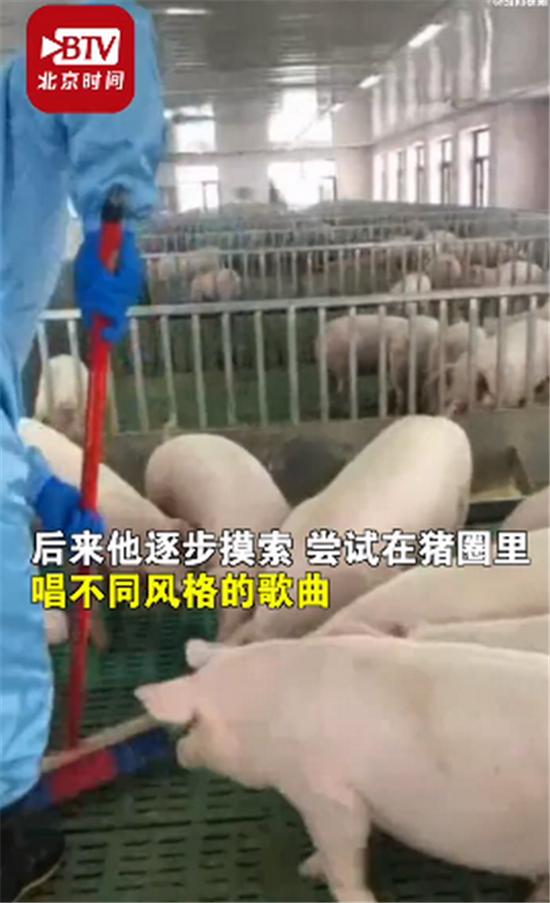哈尔滨养猪男子给猪唱歌:猪的情绪比以前稳定了,出栏时间也缩短