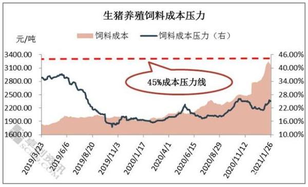 饲料价格屡创新高,1月涨幅11.98% 生猪养殖饲料成本压力再度提升