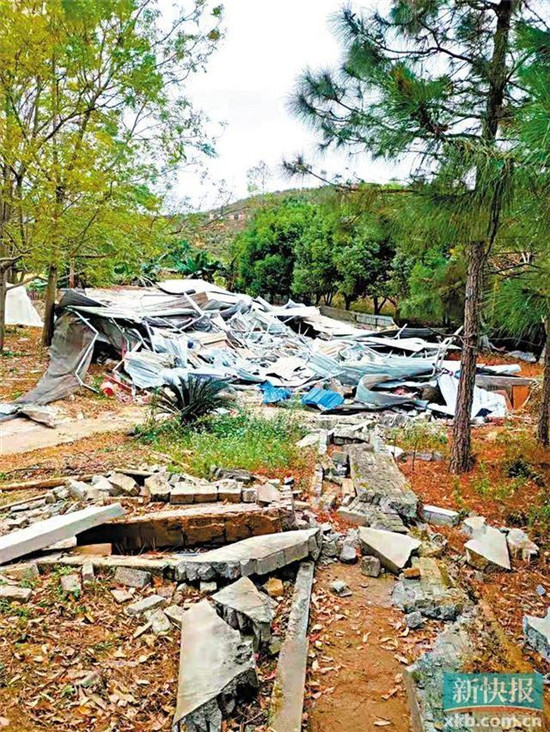 哪个单位违法拆除养猪场,哪个单位负行政赔偿责任?