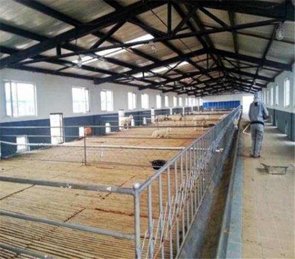 猪场建设规划和猪舍建筑
