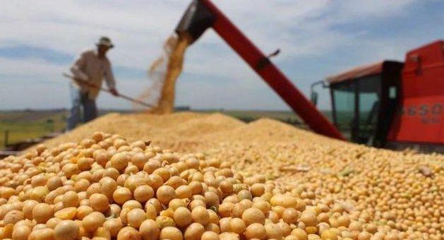 豆粕价格跌幅收窄,回落趋势要结束了?