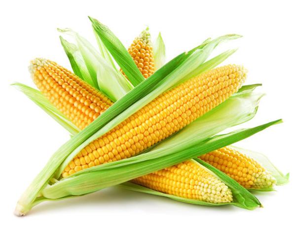 玉米市场总体看涨情绪浓厚,出现小幅下跌!