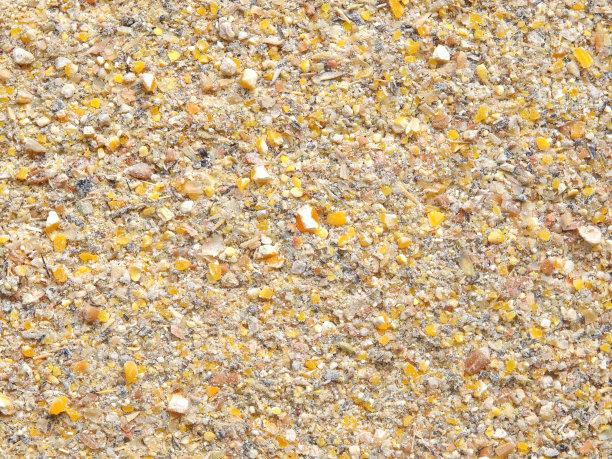 降雨提振阿根廷大豆和玉米产量前景