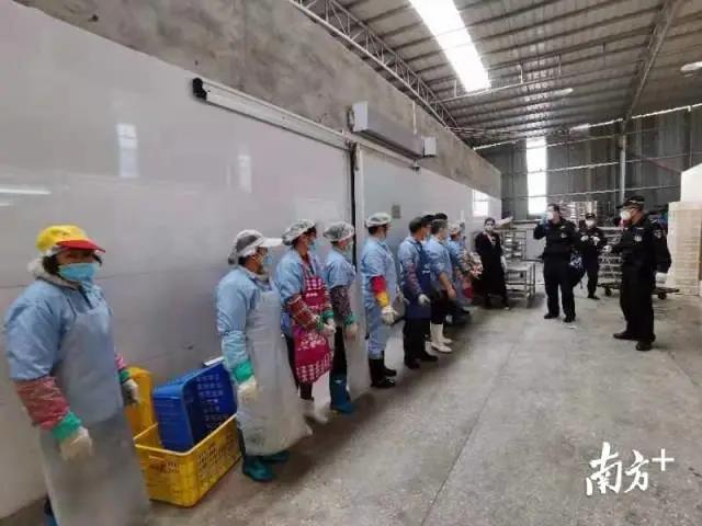 """30吨冷冻猪耳、鸡爪、牛仔骨被截获!广东江门侦破2.92亿元特大走私案"""""""
