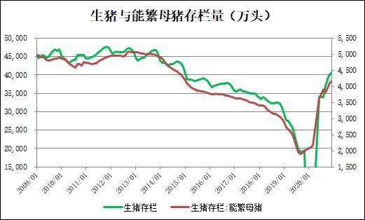 生猪消费旺季近尾声 挺价难度渐加大