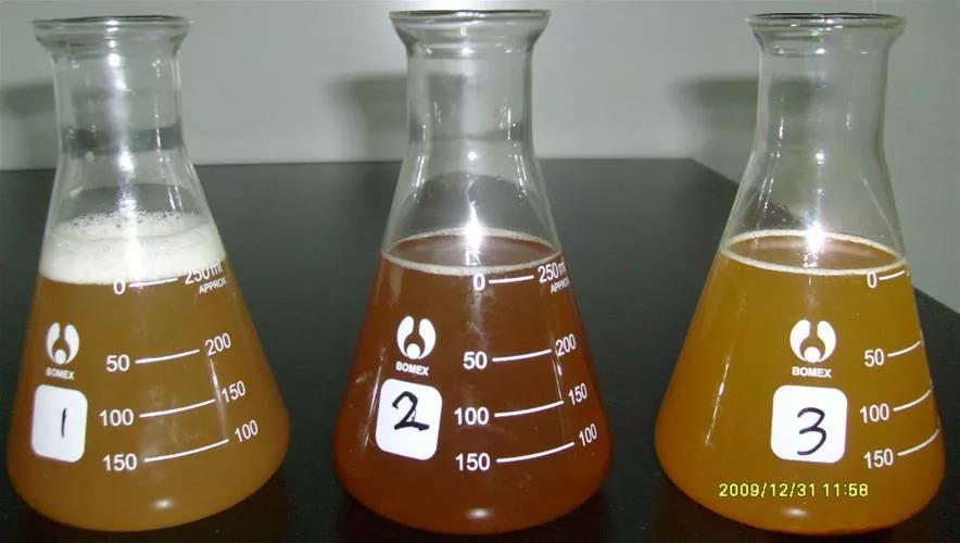 小小黄芪解决猪场大问题,黄芪多糖在养猪生产中的妙用