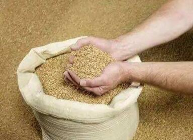 如此大涨大跌 豆粕价格行情背后上涨驱动力不足?
