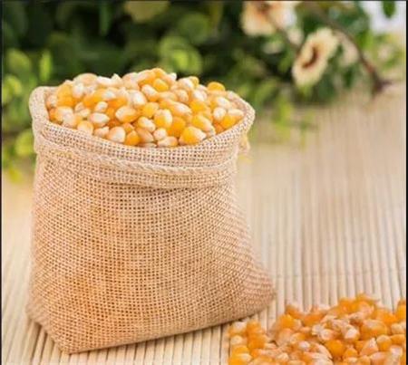 玉米市场惊魂未定,一天两到三次降价