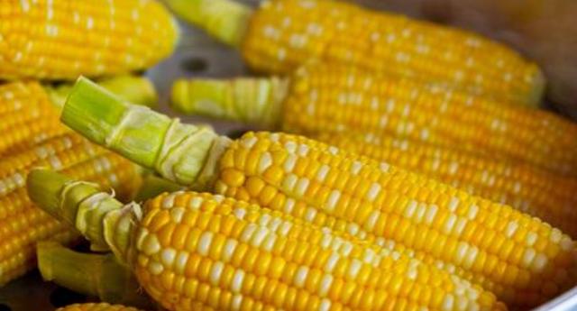 玉米价格上涨还能持续多久?