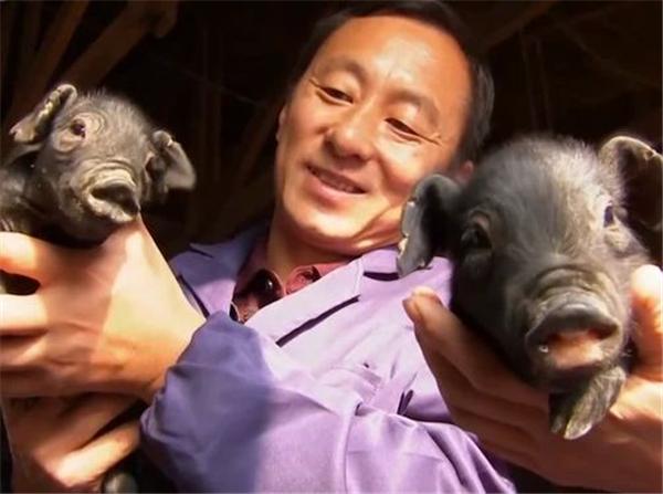 辽宁农村大学生辞职养黑猪,年入2600万,带160户村民致富