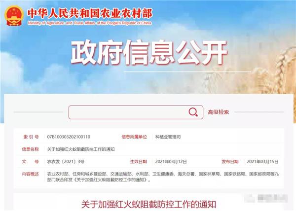 警惕!红火蚁已传播至中国12个省份,九部门联合启动防控遏制扩散