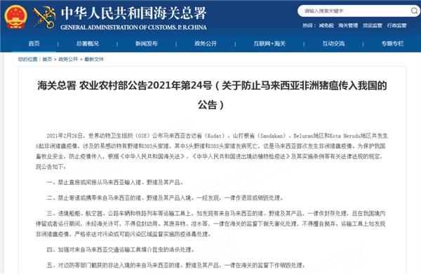 马来西亚首次发生非瘟疫情,中国官方禁止输入马来西亚猪及其产品