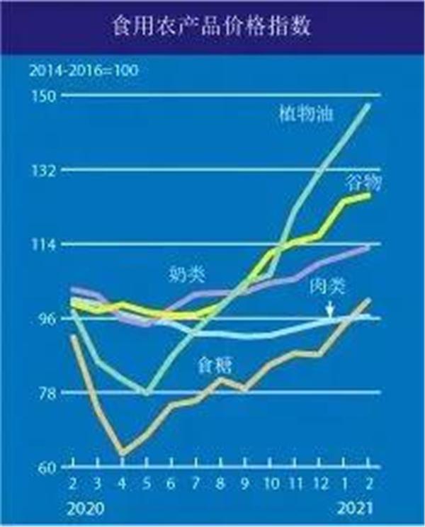 粮价暴涨 全球都在紧张应战