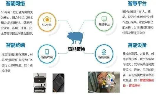 中国移动宣布养猪了!