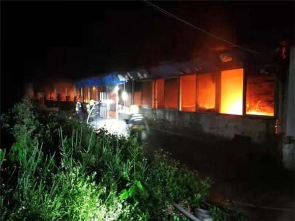 柳州这养猪场突起大火,500多头猪被火海包围!只有30多头死里逃生……