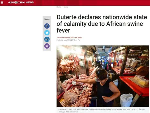 因非洲猪瘟暴发,菲律宾进入国家灾难状态!目前已损失300万头猪