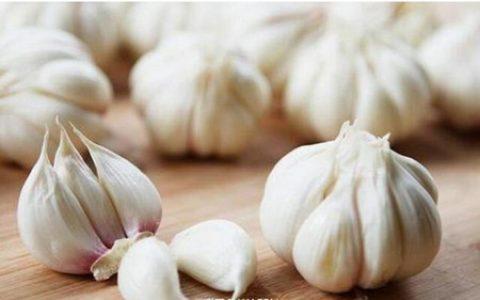 大蒜能用来给猪治病?以前的蒜白种了
