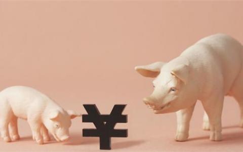 牧原股份:生猪价格受市场波动影响 暂无扩产计划